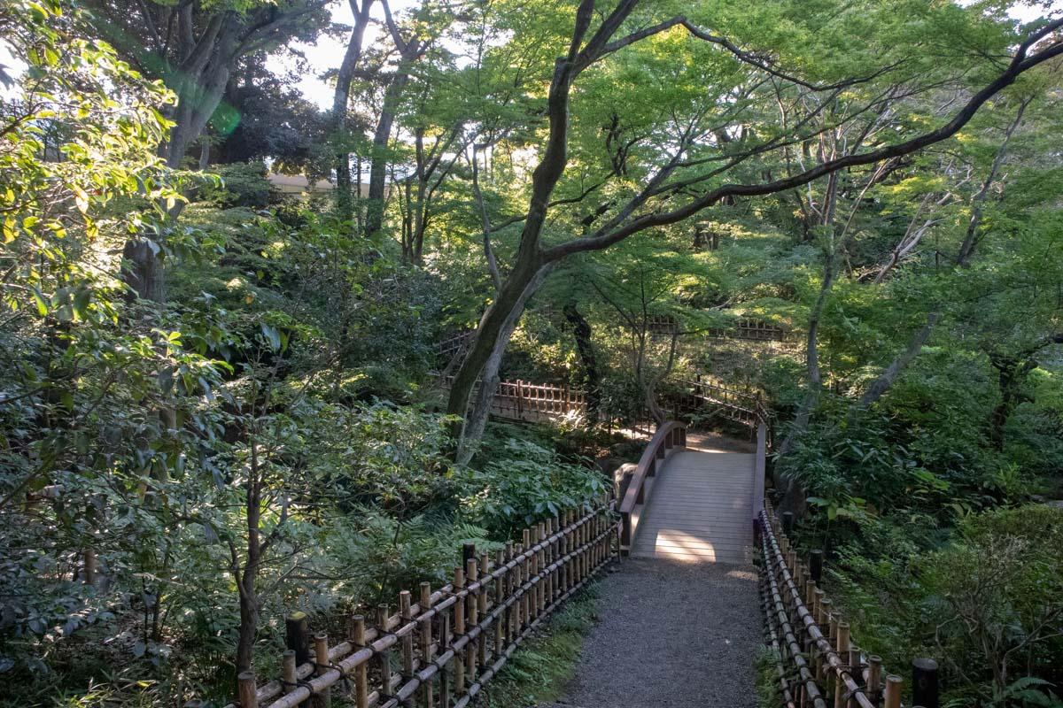 日本庭園の池の橋