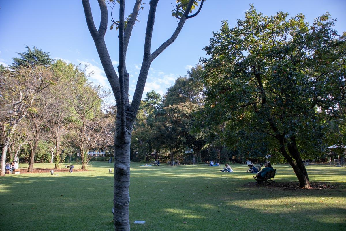 西洋庭園3