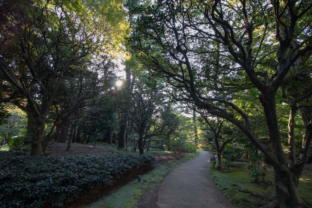 広場から日本庭園に