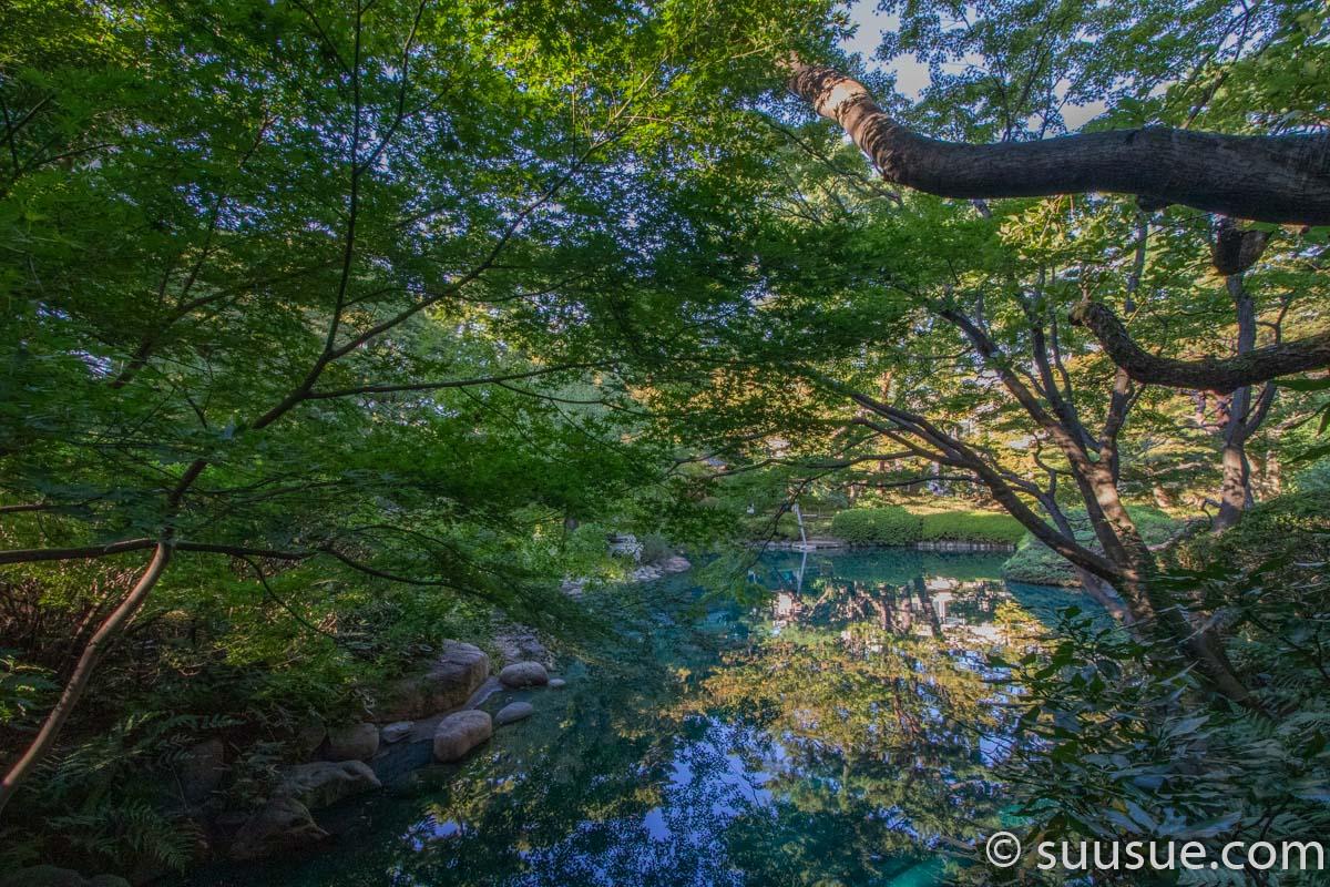 日本庭園2-4