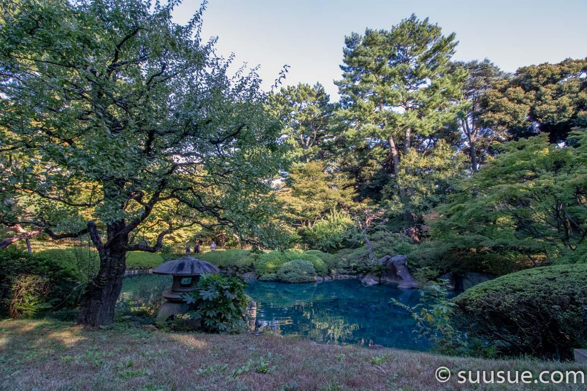 日本庭園2-6