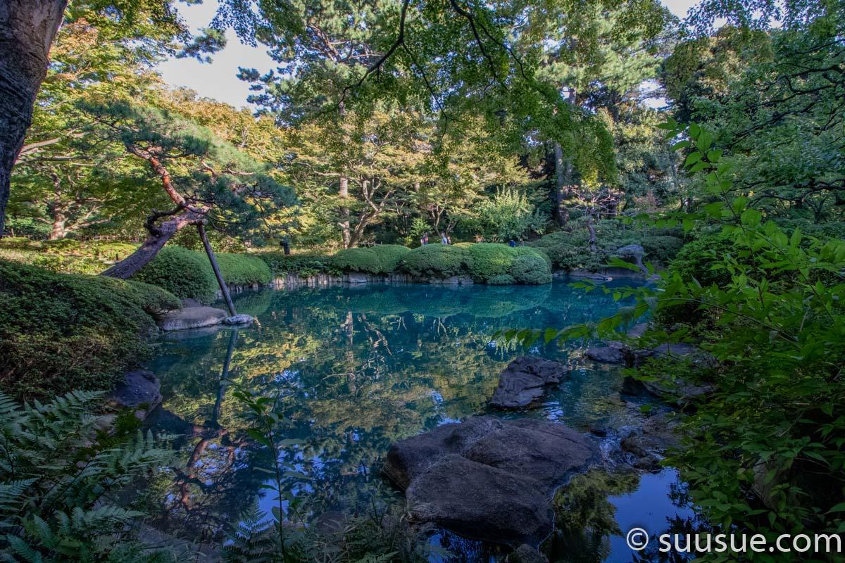 日本庭園2-8